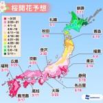 桜開花(ウェザーニュース)
