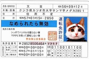 なめ猫免許証画像