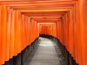 Sembon-Torii_in_Fushimi_Inari_Grand_Shrine_15